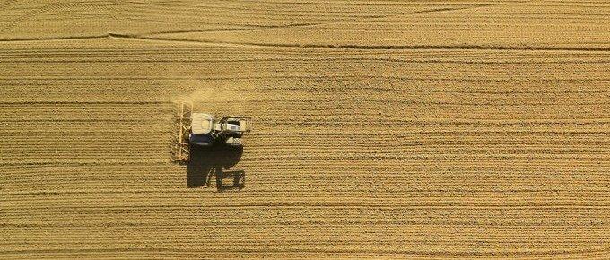 La industria alimentaria contra los alimentos ecológicos