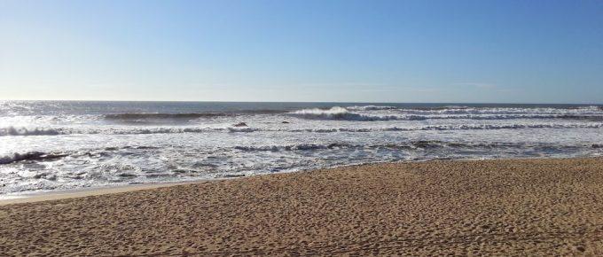 El comercio de arena es imprescindible para ganar terreno al mar